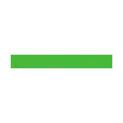 logo Festool